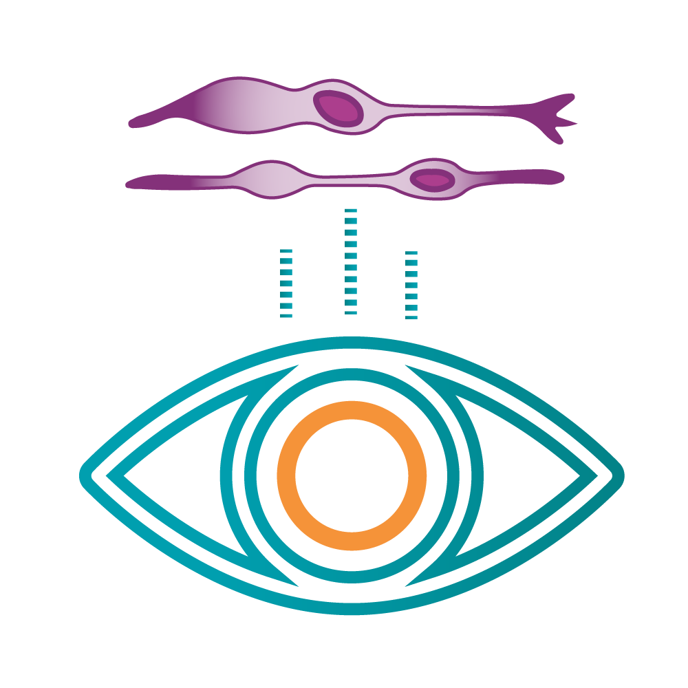 Cell Reprogramming for Ophthalmology